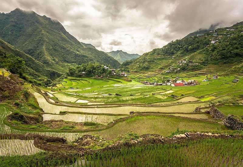yeşil yaşam nedir vadi köy