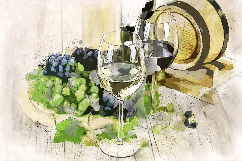 kırmızı ve beyaz şarap çizim