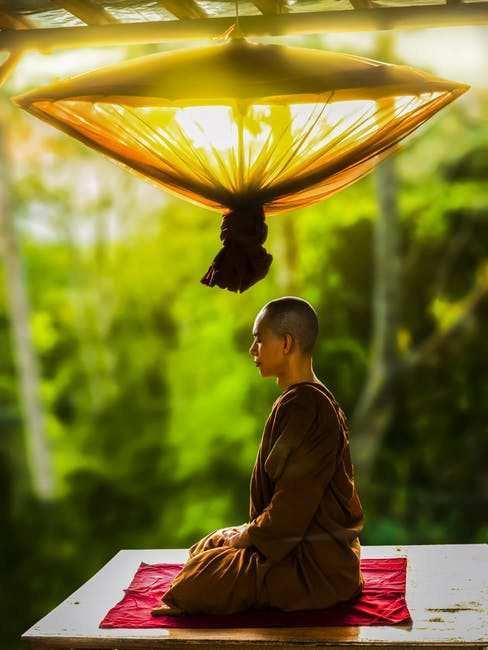 zen budisti meditasyon zazen