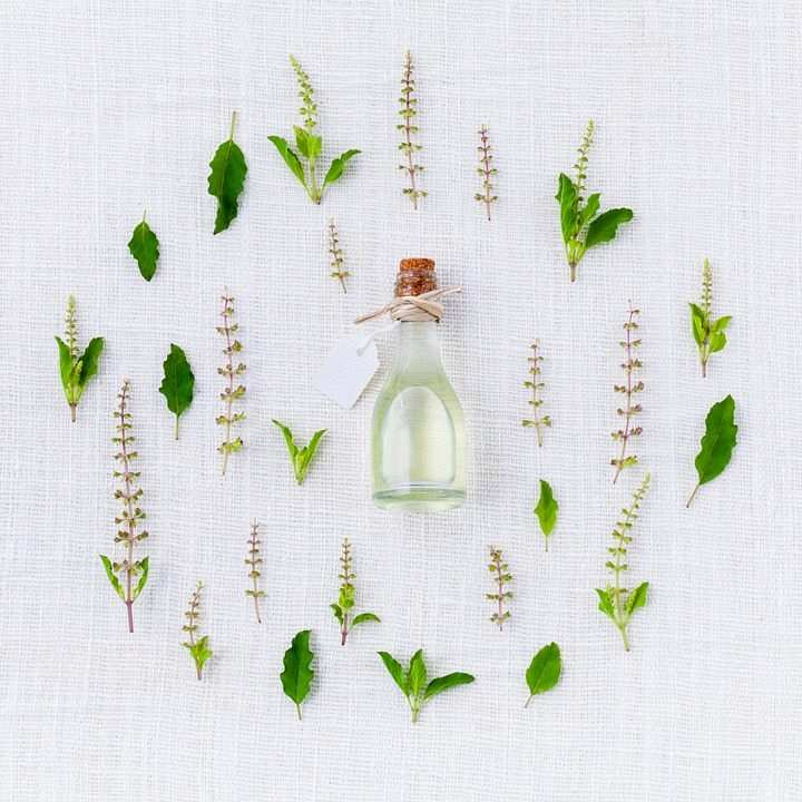 esans, bitki yağı