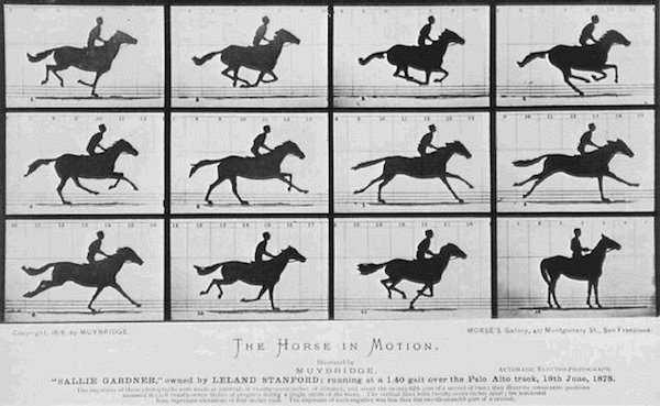 zoetrope resimleri atlar