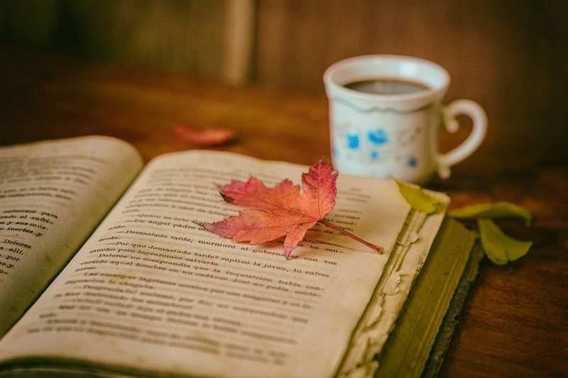 kitap okumayı kolaylaştıran 10 öneri kitap kahve sonbahar