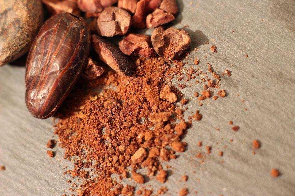 kakao ve kakao çekirdekleri
