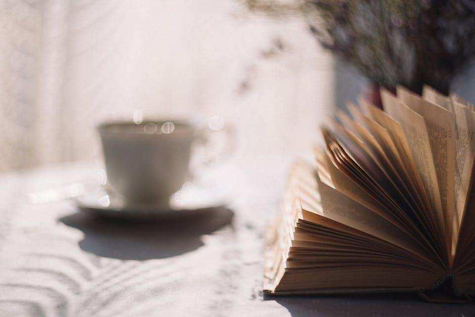 batı edebiyatında akımlar çay kitap günbatımı