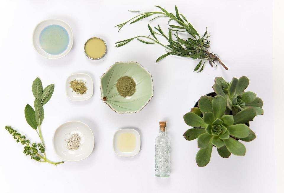 doğal kişisel bakım cilt bakımı krem bitki