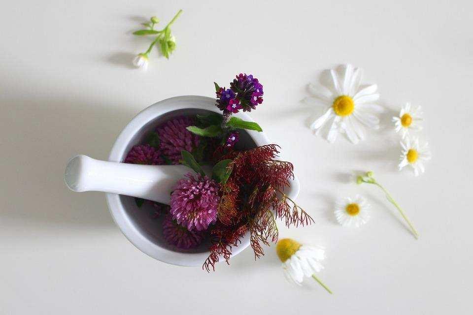 doğal kişisel bakım bitki çiçek
