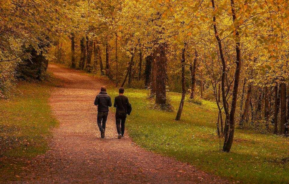 orman iki kişi yürüyüş