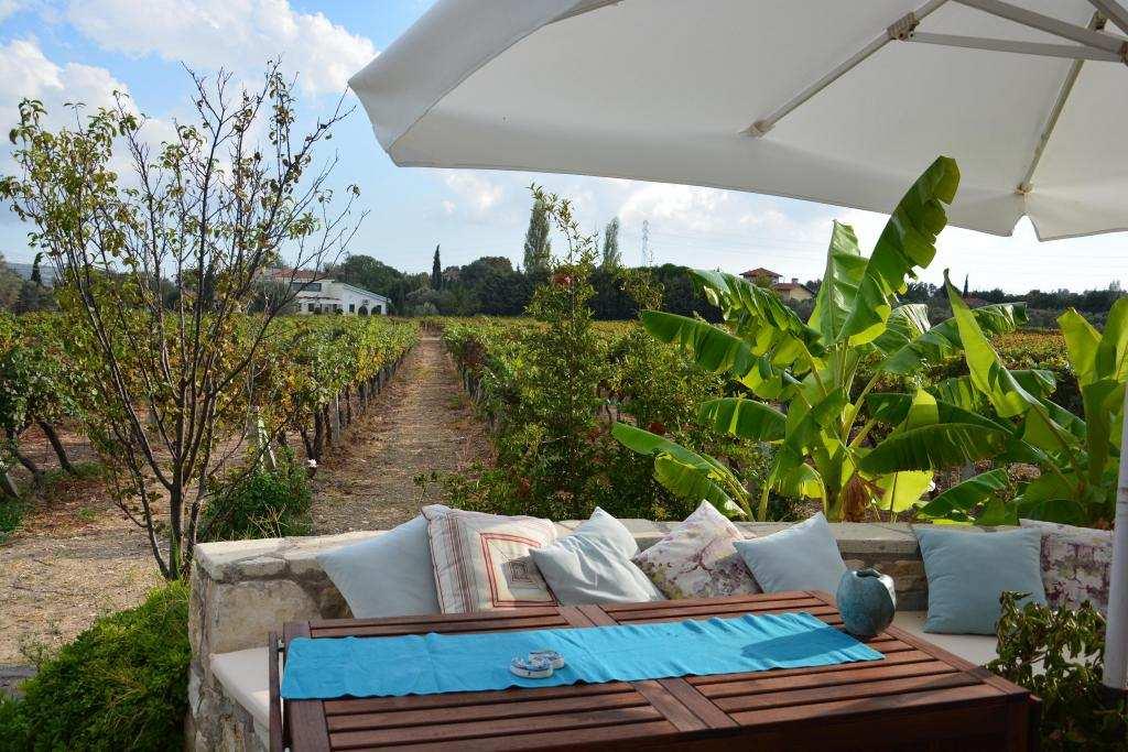 urlice vineyard