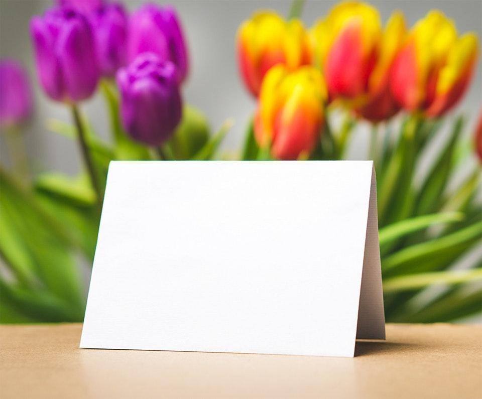 not çiçek