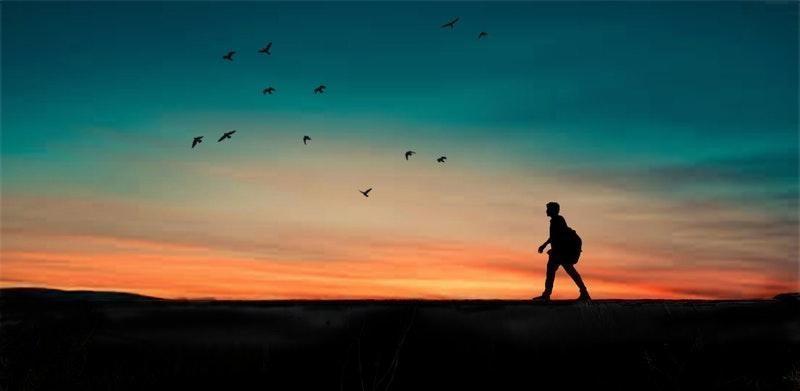 özgürlük doğa