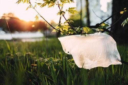plastik doğa