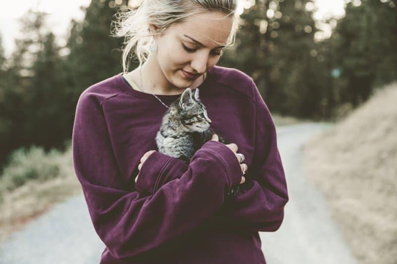 kedi kadın sevgi evcil hayvan
