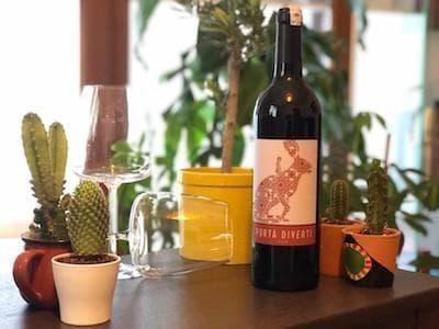 vinero iyi türk şarapları