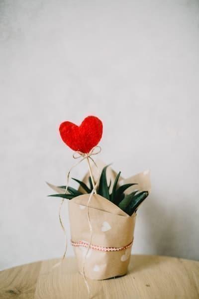 kalp aşk