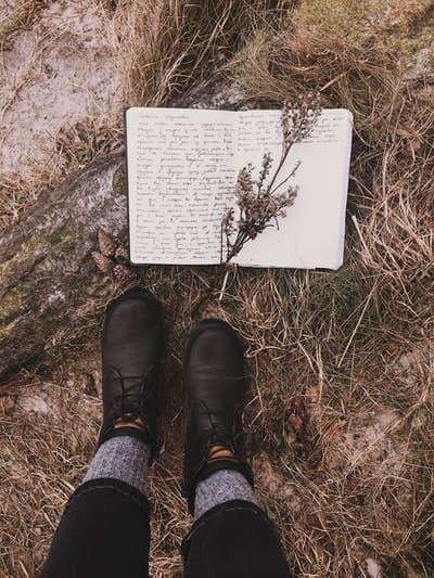 sonbahar kitap