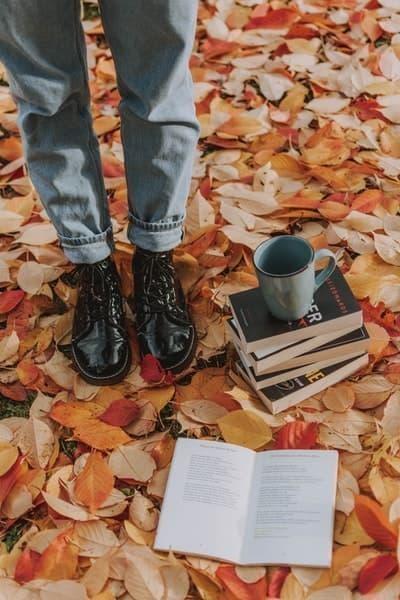 sonbahar roman kitaplar