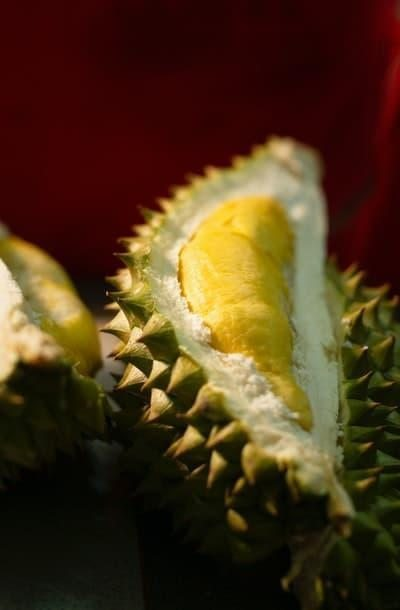 durian tropikal meyve