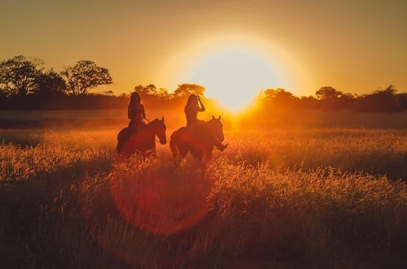 atlar günbatımı biniciler