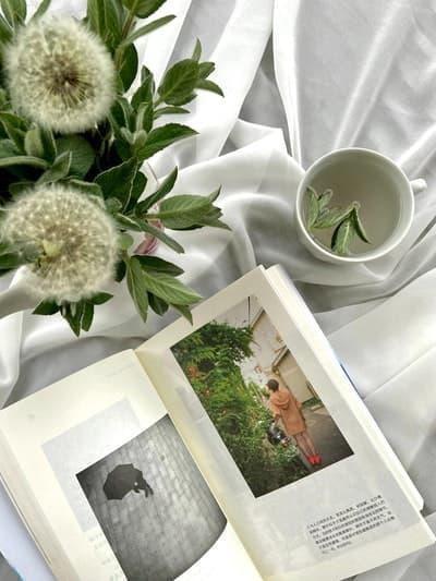 kitap çiçek çay