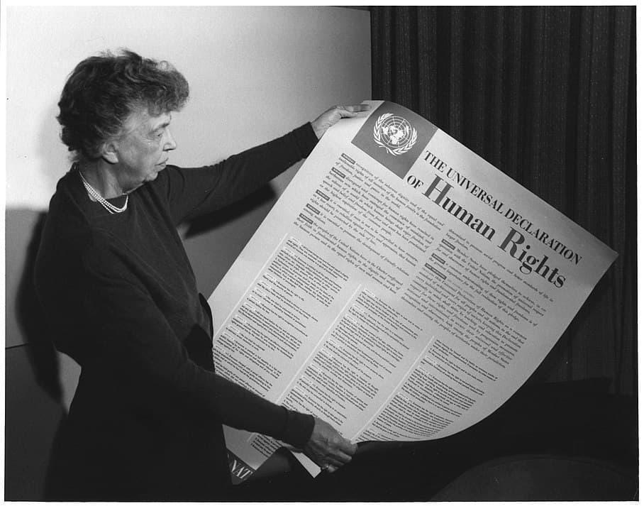 Eleanor Roosevelt, İnsan Hakları Evrensel Bildirgesi